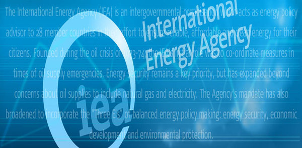 IEA How to Smart Grid Guide